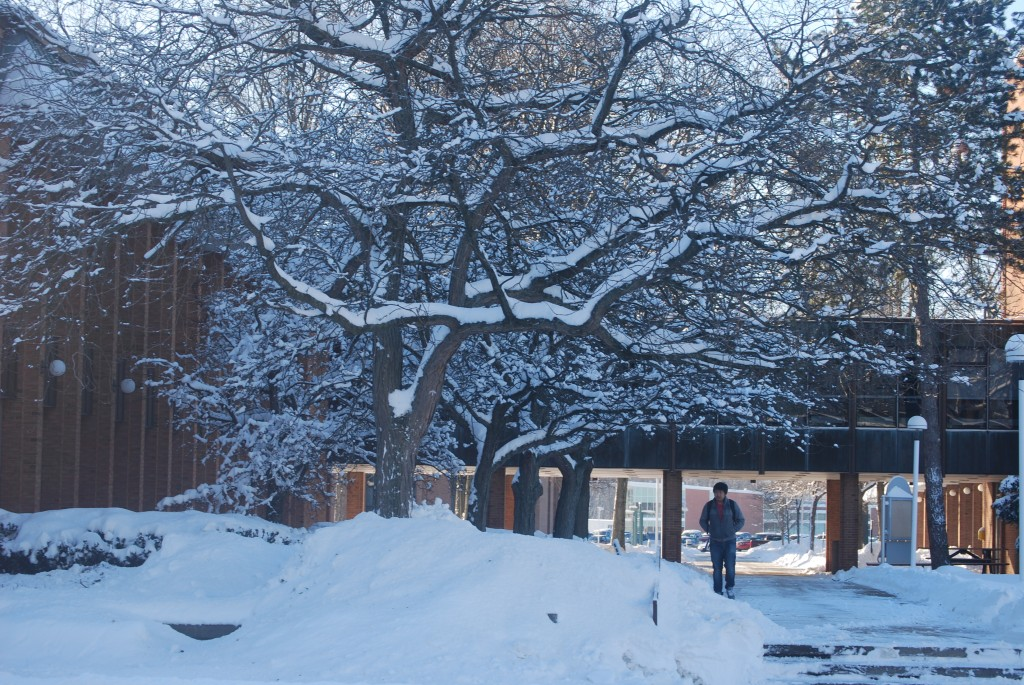 LCCC was blanketed by snow after Feb. 2 snowstorm that closed campus.   Alex Delaney-Gesing | The Collegian